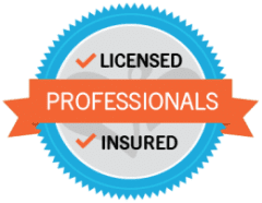professionals-insured