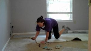 Carpet Removal